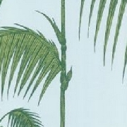 Palm-Leaves-66-2010